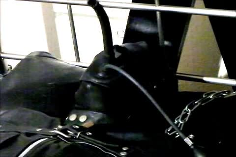Wearing A Rubber Cat Suit Inside A Leather Body Bag manacled To The sofa, Hooded And Gagged, Then Teased For Two Hours Until he cum.