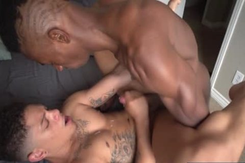 Latin homosexual males oral sex With sperm flow